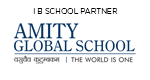 Amity Global School